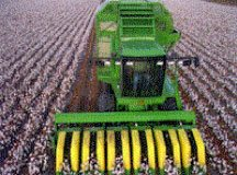 cottonseed combine - Cottonseed Goes With the Flow