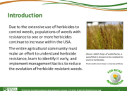 WSSA Lesson1 Slide3 180x130 - Herbicide-resistant Weeds Training Lessons