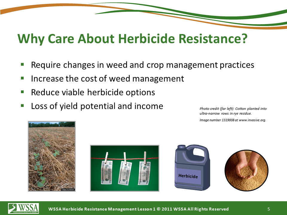WSSA Lesson1 Slide5 - Current Status of Herbicide Resistance in Weeds