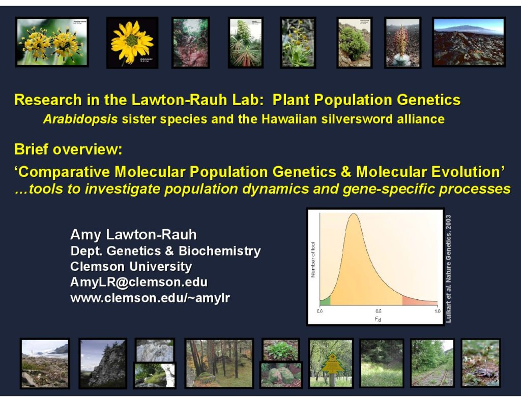 Palmer Amaranth Segregation Lawton 1024x791 - Plant Population Genetics