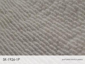 Slide75.JPG cotton innovations II
