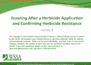 Slide1.PNG lesson4 180x130 - Herbicide-resistant Weeds Training Lessons