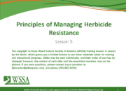 Slide1.PNG lesson5 180x130 - Herbicide-resistant Weeds Training Lessons