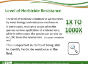 Slide11.PNG lesson3 180x130 - Herbicide-resistant Weeds Training Lessons