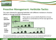 Slide13.PNG lesson5 180x130 - Herbicide-resistant Weeds Training Lessons