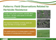 Slide14.PNG lesson4 180x130 - Herbicide-resistant Weeds Training Lessons