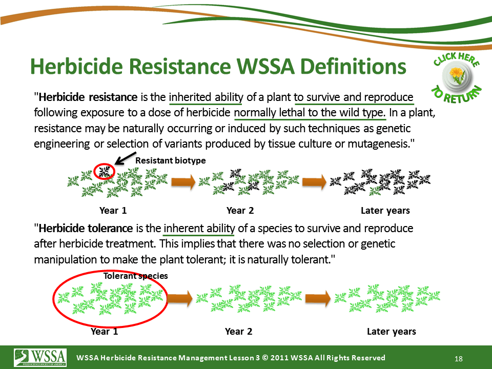 Slide18.PNG lesson3 - What Is Herbicide Resistance?