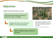 Slide2.PNG lesson3 180x130 - Herbicide-resistant Weeds Training Lessons