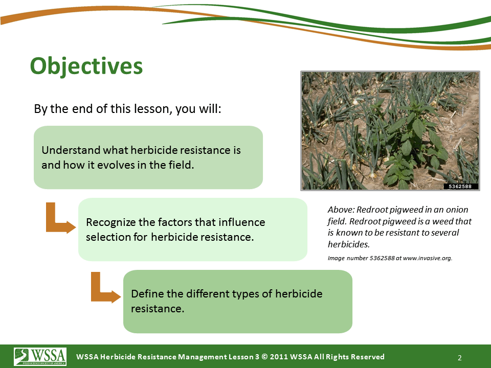 Slide2.PNG lesson3 - What Is Herbicide Resistance?