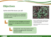 Slide2.PNG lesson5 180x130 - Herbicide-resistant Weeds Training Lessons