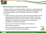 Slide21.PNG lesson4 180x130 - Herbicide-resistant Weeds Training Lessons