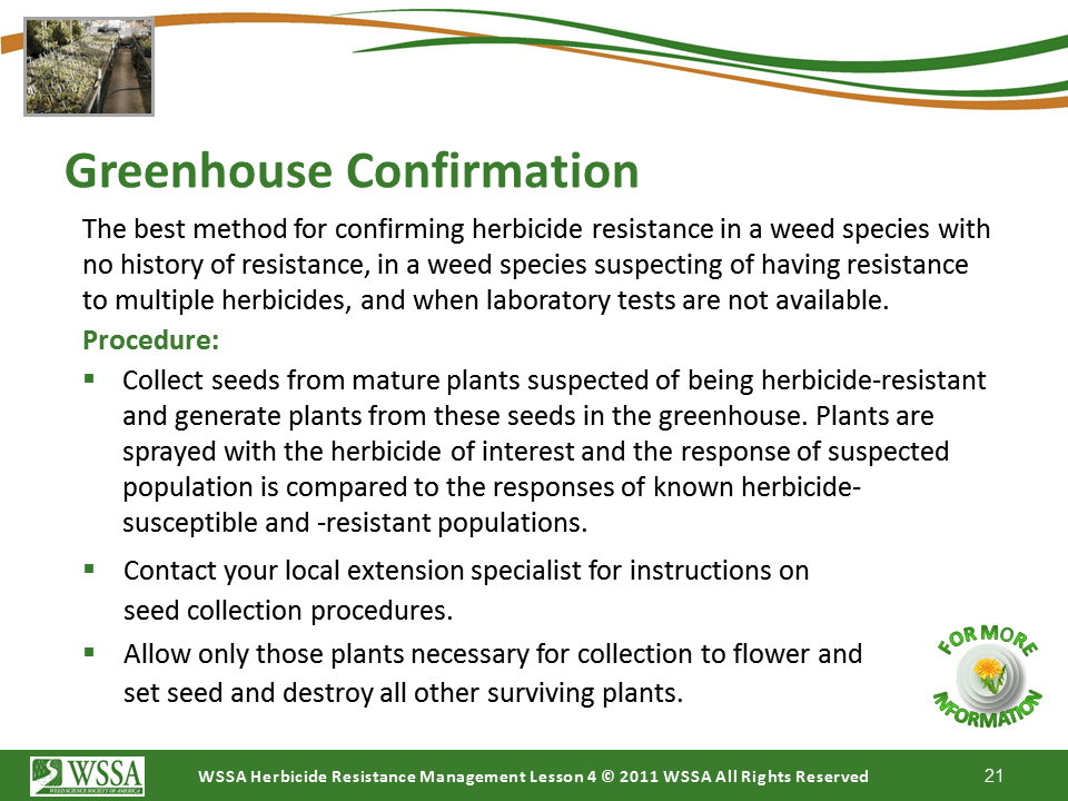 Slide21.PNG lesson4 - Scouting After a Herbicide Application and Confirming Herbicide Resistance
