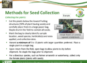Slide26.PNG lesson4 180x130 - Herbicide-resistant Weeds Training Lessons