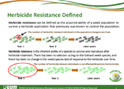 Slide3.PNG lesson3 180x130 - Herbicide-resistant Weeds Training Lessons