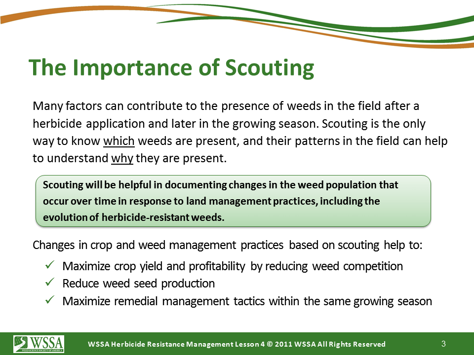 Slide3.PNG lesson4 - Scouting After a Herbicide Application and Confirming Herbicide Resistance