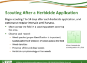 Slide4.PNG lesson4 180x130 - Herbicide-resistant Weeds Training Lessons