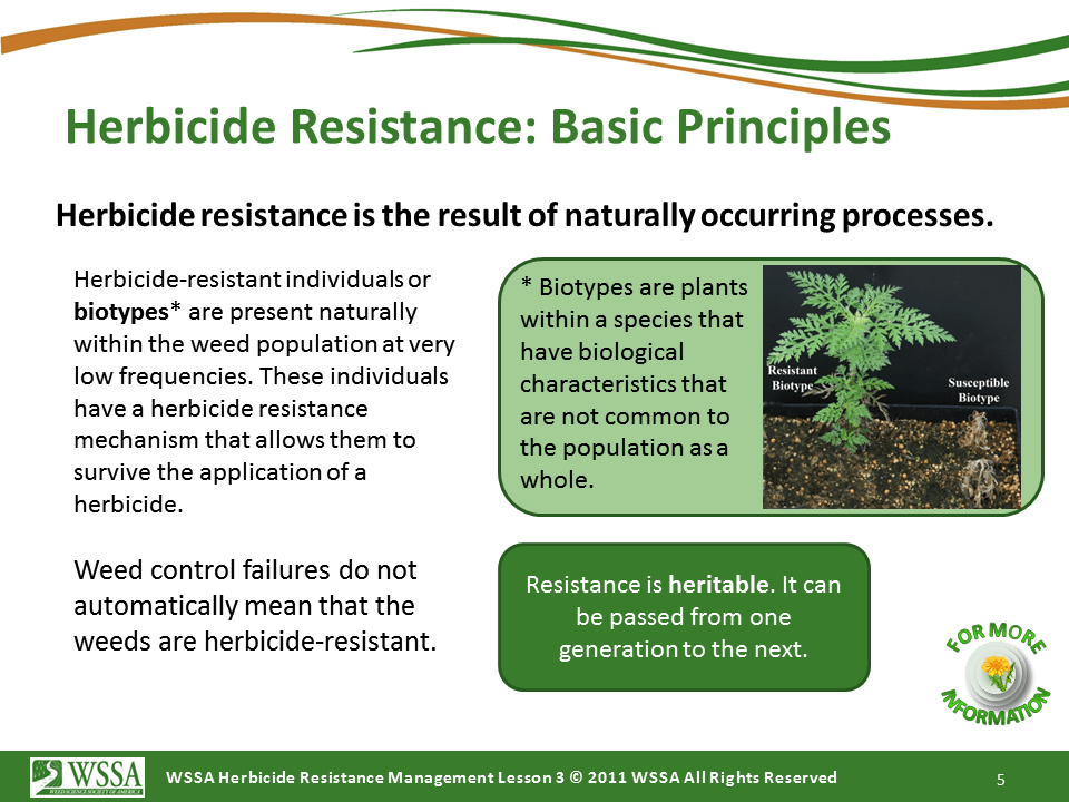 Slide5.PNG lesson3 - What Is Herbicide Resistance?