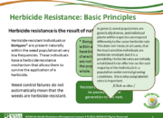 Slide6.PNG lesson3 180x130 - Herbicide-resistant Weeds Training Lessons