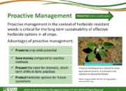 Slide7.PNG lesson5 180x130 - Herbicide-resistant Weeds Training Lessons