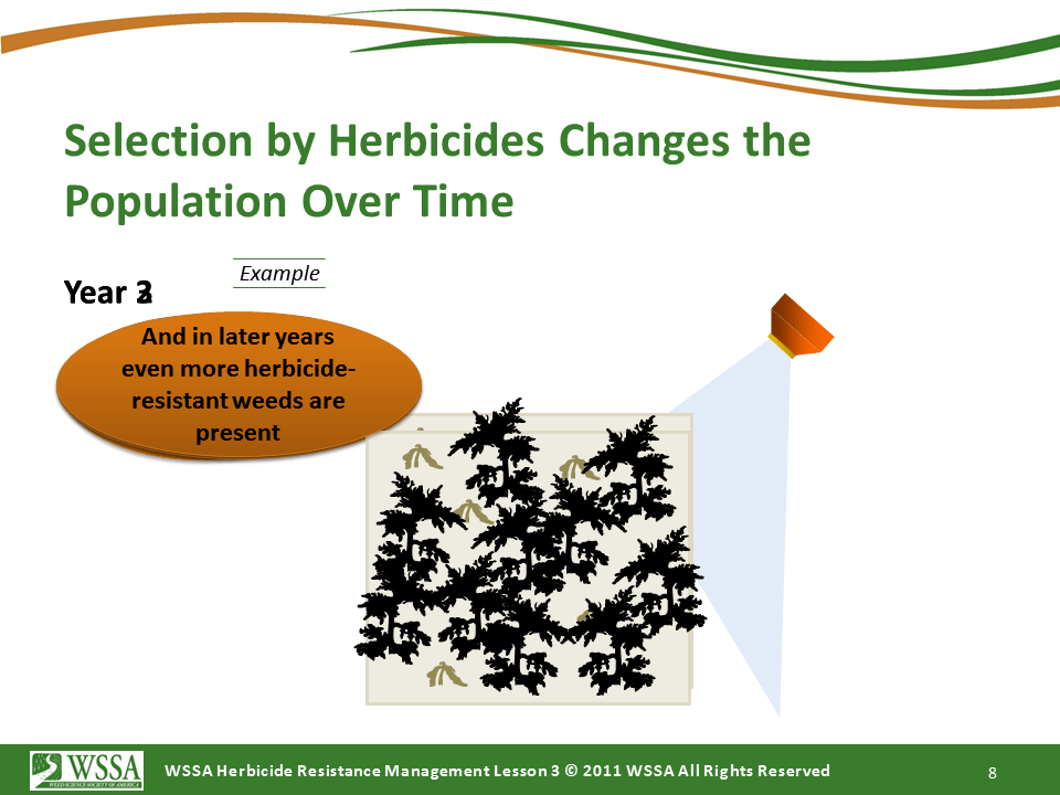 Slide8.PNG lesson3 - What Is Herbicide Resistance?