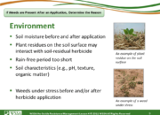 Slide9.PNG lesson4 180x130 - Herbicide-resistant Weeds Training Lessons