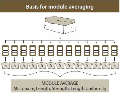 classification module averaging - Classification of Upland Cotton
