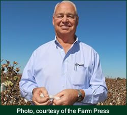 Clyde Sharp farm - Manage Heat with Innovation for Cotton Production