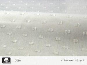 Slide44.JPGmmxvii