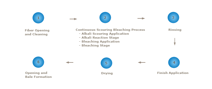 cleanedcottonscouring - Cotton Preparation