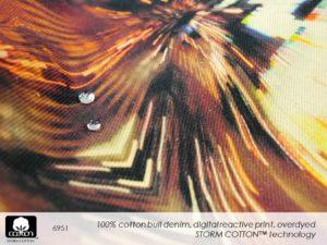 Slide34.JPGmmxvii 2