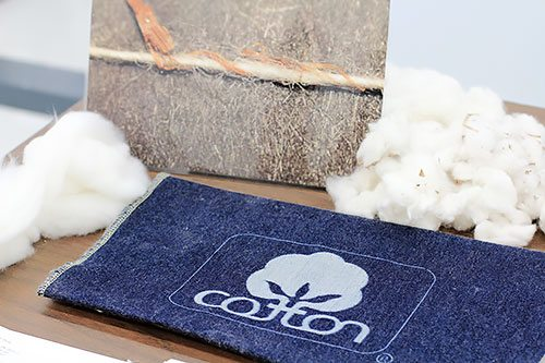 Cotton Technical Services and Implementation