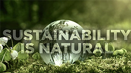 Sustainability is Natural