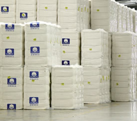EFS® Cotton Fiber, Yarn & Fabric Suppliers - Cotton Incorporated