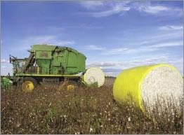 Seed Cotton Handling Storage - John Deere Round Modules - Cotton