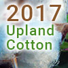 upland 2017 thumb - Cotton Farming Decision Aids