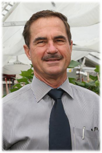 David M Stelly