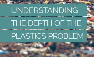 Understanding the Depth of the Plastic Problem