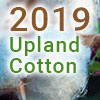 upland 2019 thumb - Cotton Farming Decision Aids