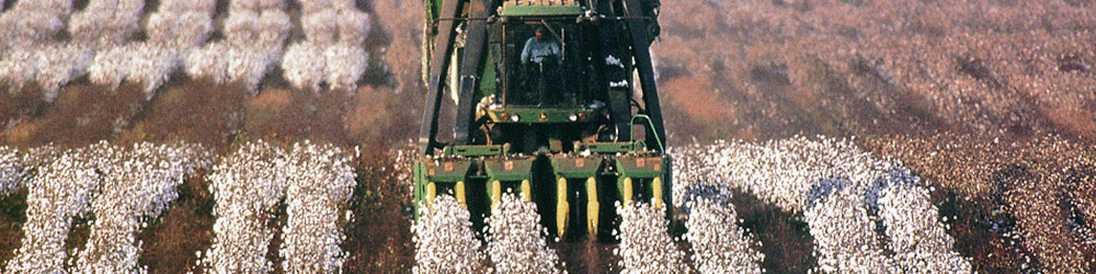 harvest systems main - Cotton Harvest Systems