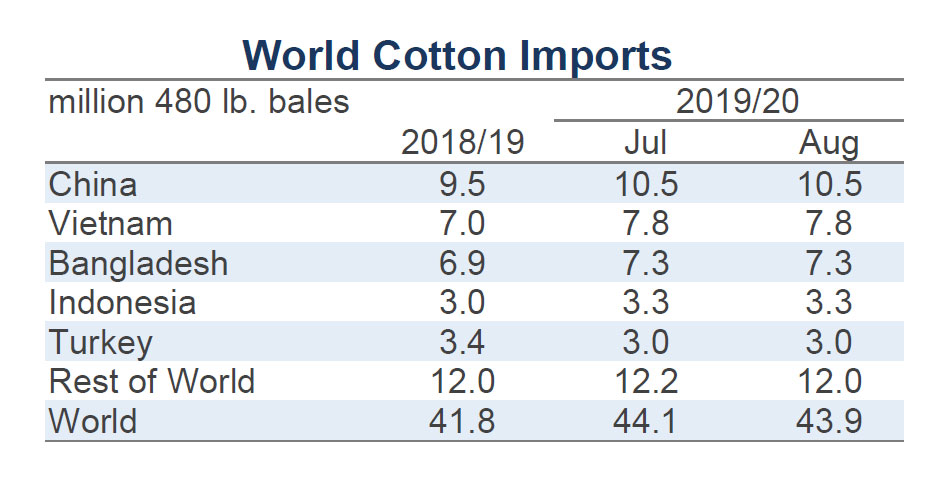 Cotton Market Fundamentals and Monthly Cotton Price Outlook